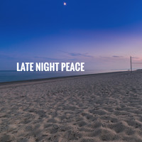 White Noise Research, Sounds of Nature Relaxation and Nature Sounds Artists - Late Night Peace