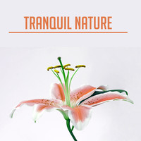 Nature Sounds - Tranquil Nature – Peaceful Music for Relaxation, Sleep, Healing, Zen Music, Deep Relief, Calmness & Harmony, Soothing Piano