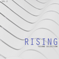 Various Artists - Rising Techno Selection, Vol. 2 (Explicit)