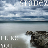 Spadez - I Like You