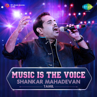 Shankar Mahadevan - Music is the Voice - Shankar Mahadevan