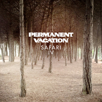Various Artists - Permanent Vacation Safari 4