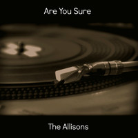 The ALLISONS - Are You Sure