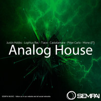 Various Artists - Analog House