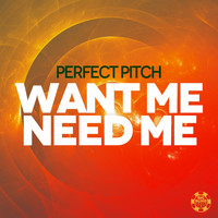 Perfect Pitch - Want Me Need Me