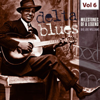 Big Joe Williams - Milestones of a Legend - Delta Blues, Vol. 6