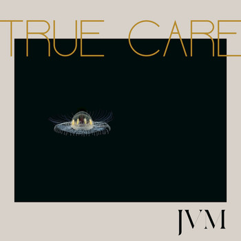 Image result for james vincent mcmorrow true care