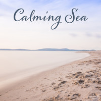 Nature Sounds - Calming Sea – Healing Music for Relaxation, Spa Music, Pure Massage, Peaceful Mind, Zen Music, Relaxation Wellness, Deep Relief, Nature Sounds