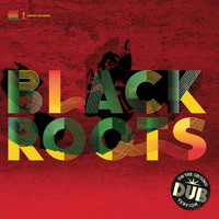 Black Roots - On the Ground in Dub