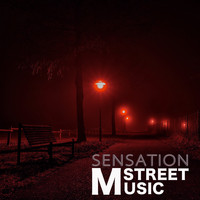 Various Artists - Music Street Sensation