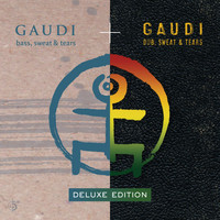 Gaudi - Bass, Sweat & Tears (Deluxe Edition)