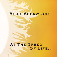 Billy Sherwood - At the Speed of Life