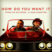 Sean Kingston - How Do You Want It (feat. Sean Kingston)