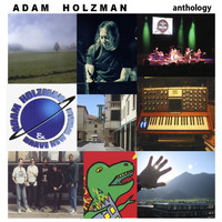 Adam Holzman - In a Loud Way