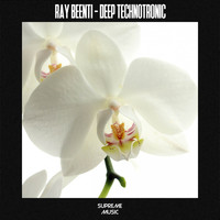 Ray Beenti - Deep Technotronic