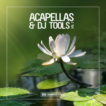 Various Artists - Enormous Tunes - Acapellas & DJ Tools, Vol. 2