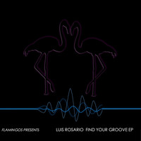 Luis Rosario - Find Your Groove EP