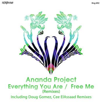 Ananda Project - Everything You Are / Free Me (Remixes)