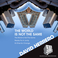 David Herrero - The World Is Not the Same