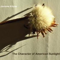 Brad Lubman - The Character of American Sunlight