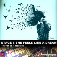Dubslate records - Stage 5 She Feels Like A Dream