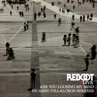 Reboot - Are You Loosing My Mind (Ricardo Villalobos Remixes)