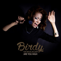 Birdy - Are You High