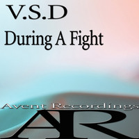 V.S.D - During A Fight