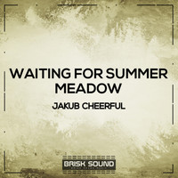 Jakub Cheerful - Waiting for Summer /  Meadow