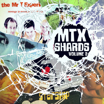 The Mr. T Experience - Shards, Vol. 2