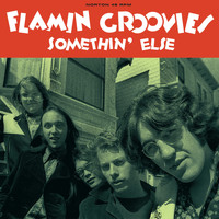 The Flamin' Groovies - Somethin' Else