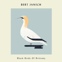 Bert Jansch - Black Birds of Brittany