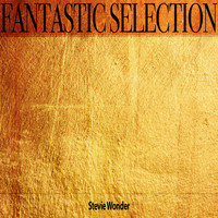 Stevie Wonder - Fantastic Selection