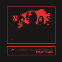 Toy - Dream Orchestrator (TVAM Remix)