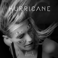 Bird - Hurricane