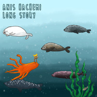 Anis Hachemi - Long Story