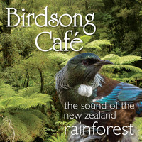 David Antony Clark - Birdsong Café - The Sound of the New Zealand Rainforest