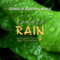 Sounds of Beautiful World - Summer Rain (Nature Sounds for Relaxation, Meditation, Healing & Sleep)