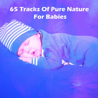 White Noise Babies|White noise for baby sleep|Soothing White Noise For Infant Sleeping And Massage, Crying & Colic Relief - 65 Tracks Of Pure Nature For Babies