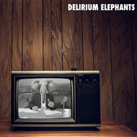 Delirium Elephants - Delirium Elephants