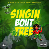 Box Boy Mike Spitz - Singin Bout Tree (Explicit)