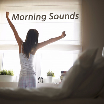 Various Artists - Morning Sounds (The Best of Extraordinary Chillout Lounge & Downbeat)
