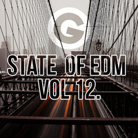 Rich Knochel - State Of EDM Vol 12.