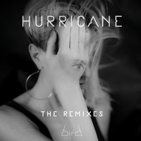 Bird - Hurricane (Remixes)