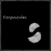 MoMa - Corpuscules
