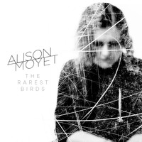 Alison Moyet - The Rarest Birds