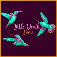 SHIVAN - Little Death