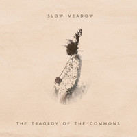 Slow Meadow - The Tragedy of the Commons