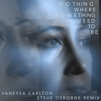 Vanessa Carlton - Nothing Where Something Used to Be