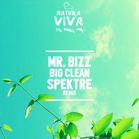 Mr. Bizz - Big Clean